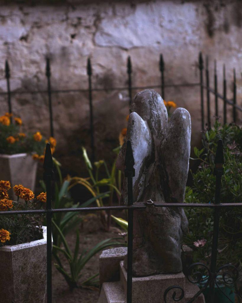 Flower of the dead