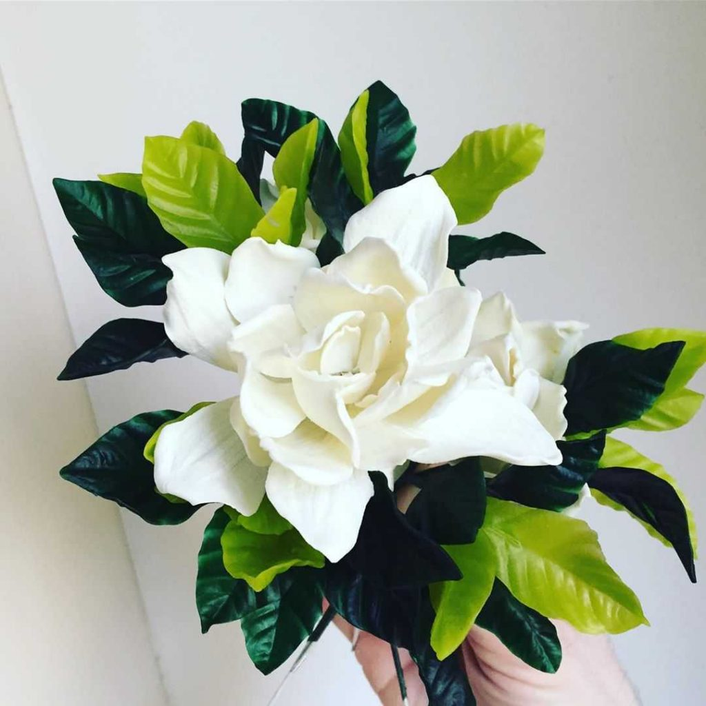 Gardenia flower for a wedding bouquet