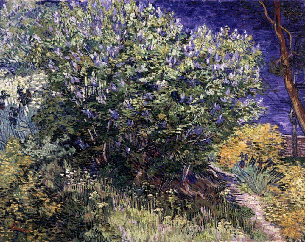 Van Gogh's lilacs